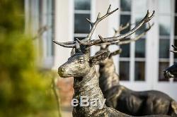 Large Lifesize Cast Iron Standing Stag Deer Looking Left Statue Garden Bronze